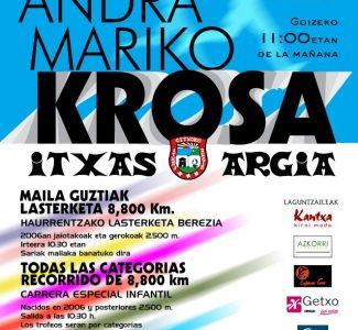 INSCRIPCIONES XXXVIII. CROSS DE ANDRA MARI
